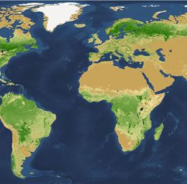 This is the global map of tree density at the square-kilometer pixel scale.