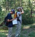 Here, Morgan Tingley (right) and Pascal Title (left) are conducting a point count in the field for a resurvey of wildlife in the Sierra Nevada.
