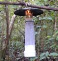 This light trap on Panama's Barro Colorado Island lures sand flys that carry leishmaniasis, as well as other insects.