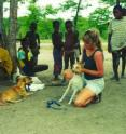 Virginia Tech wildlife scientist Kathleen Alexander examined how human behavior influences disease transmission between domestic and wild dogs in Africa.