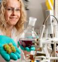 Following her proof of concept for chemzymes neutralizing a natural poison, chestnut toxins are just the beginning for chemist Jeannette Bjerre.