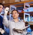 Research by Yibin Kang (right), an associate professor of molecular biology at Princeton, has uncovered the exact mechanism in individuals with advanced breast cancer that lets traveling tumor cells disrupt normal bone growth in cases when the cancer spreads to the bone. The research was conducted with Nilay Sethi, a dual degree student who recently finished his Ph.D. in molecular biology at Princeton and is now completing his medical degree at the University of Medicine and Dentistry of New Jersey-Robert Wood Johnson Medical School.
