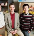 Illinois researchers developed a 3-D nanostructure for battery cathodes that allows for very rapid charge and discharge, without sacrificing capacity.