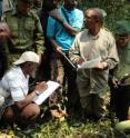 WCS researcher Deo Kujirakwinja (in center with blue shirt) trains census participants on how to collect data on gorilla nests (at the feet of the group in this image). Researchers calculate gorilla densities using nest counts and dung piles.