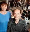 Illinois professor Claudio Grosman and research scientist Gisela Cymes used a high-resolution single-molecule study technique to see the very subtle differences between two branches of an important family of neurotransmitter-gated ion channels.