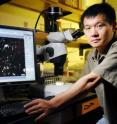 Georgia Tech School of Biology assistant professor Lin Jiang displays a microscopic image of a protist species he used to support Darwin's hypothesis that the struggle for existence is stronger between more closely related species than those distantly related.