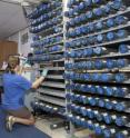Kristin Hillis (Texas A&M University) labels new cores in one of the shipboard labs on the JOIDES Resolution.