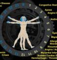 The circadian clock illustrates the many diseases that manifest in a person during certain times of the day.