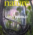 Scientists from Binghamton University and Cardiff University, and New York State Museum researchers, and have reported the discovery of the floor of the world's oldest forest in a cover article in the March 1 issue of <I>Nature</I>, a leading international journal of science.