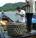 Traditional fisheries management dating back to the 17th century benefits coral reefs in Aceh, Indonesia.
