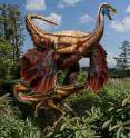 This is an artistic reconstruction of feathered ornithomimid dinosaurs found in Alberta.