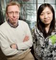 Chemistry professor Wilfred van der Donk (left) and graduate student Weixin Tang, University of Illinois, determined the unusual structure of a bacterial toxin.
