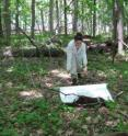 This image shows tick surveying with a drag cloth.