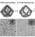 These schematic illustrations and corresponding transmission electron microscope images show the evolution of platinum/nickel from polyhedra to dodecahedron nanoframes with platinum-enriched skin.