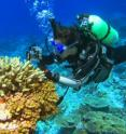 San Diego State University graduate student Yan Wei Lim is exploring coral reefs in the southern Line Islands.