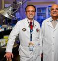 University of Missouri School of Medicine researchers Pradeep Sahota, M.D., and Mahesh Thakkar, Ph.D., studied alcohol's effects on sleep for more than five years. The researchers have found that drinking alcohol to fall asleep interferes with sleep homeostasis, the body's sleep-regulating mechanism.
