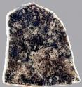This is a section of a 1.8 billion-year-old fossil-bearing rock.