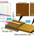 The novel heterogeneous wavelength tunable laser diode consists of QD technology and silicon photonics.