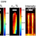 The X-ray images of each nanowire show the distribution of the scattering intensity and the mechanical strain in the core of gallium-nitride and the shell of indium-gallium-nitride. The strain shows that the shell fits perfectly with the core.