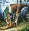 <em>Gorgosaurus</em> is shown using its specialized teeth for feeding on a young <em>Corythosaurus</em> in Alberta, 75 million years ago.
