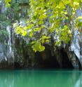 This is the entrance to the cave in Puerto Princesa Subterranean River National Park in Palawan, Philippines. The researchers used a  stalagmite growing from the floor of the cave to learn about rainfall in the Philippines during the Younger Dryas.