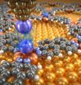 Rare gas atoms deposited on molecular network are investigated with a probing tip, which is decorated with a xenon atom. The measurements give information about the weak van der Waals forces between these individual atoms.