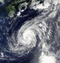 NASA's Terra satellite provided infrared data on Tropical Storm Lionrock on Aug. 23 at 0140 UTC south of Japan in the northwestern Pacific Ocean.