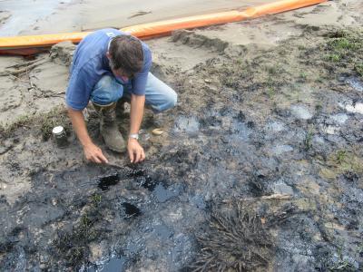 Predicting Amount Of Oil In Contaminated Soils E