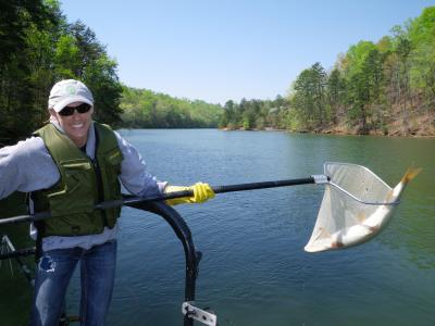 Study fish near coal fired power plants have lower levels for Fish with least mercury