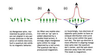A quantum dot's two mobile electrons will actually influence the manganese spins differently. That's because while one mobile electron prefers to stay in the middle of the quantum dot, the other prefers to locate further toward the edges. As a result, manganese atoms in different parts of the quantum dot receive different messages about which way to align their spins. In the tug-of-war that ensues, the mobile electron that interacts more intensely with the manganese atoms wins, aligning more spins and causing the quantum dot, as a whole, to be <stro />magnetic</strong>.&#8221; class=&#8221;image image_medium&#8221; /></a></p> <p>At the smallest scales, <strong>magnetism</strong> may not work quite the way scientists expected, according to a recent paper in <i>Physical Review Letters</i> by Rafał Oszwałdowski and Igor Žutić of the University at Buffalo and Andre Petukhov of the <strong>South Dakota</strong> School of Mines and <strong>Technology</strong>. The three physicists have proposed that it would be possible to create a quantum dot &#8212; a kind of nanoparticle &#8212; that is <strong>magnetic</strong> under surprising circumstances.</p> <p>Magnetism is determined by a property all electrons possess: spin. Individual spins are akin to tiny bar magnets, which have north and south poles. Electrons can have an &#8220;up&#8221; or &#8220;down&#8221; spin, and a material is <strong>magnetic</strong> when most of its electrons have the same spin.</p> <p>Mobile electrons can act as &#8220;<strong>magnetic</strong> messengers,&#8221; using their own spin to align the spins of nearby atoms. If two mobile electrons with opposite spins are in an area, conventional wisdom says that their influences should cancel out, leaving a material without <strong>magnetic</strong> properties.</p> <p>But the <strong>UB</strong>&#8211;<strong>South Dakota</strong> team has proposed that at very small scales, <strong>magnetism</strong> may be more nuanced than that. It is possible, the physicists say, to observe a peculiar form of <strong>magnetism</strong> in quantum dots whose mobile electrons have opposing spins.</p> <p>In their <i>Physical Review Letters</i> article (<a href=