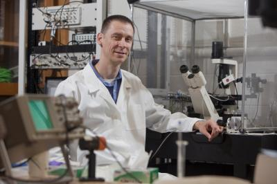 "<stro />Binghamton University</strong> researcher <strong>Christof Grewer</strong> thinks he has an important brain transport protein — glutamate transporter — figured out and he's taking aim with lasers."" class=""image image_medium"" /></a></p> <p><strong>Binghamton University</strong> researcher <strong>Christof Grewer</strong> thinks he has an important brain transport protein – glutamate transporter – figured out. And he's using a novel approach to spy on them by taking aim with lasers. Grewer, a biophysical chemist, studies glutamate transport proteins, miniscule components of our brains that move glutamate among cells. Glutamate, an important molecule in cellular metabolism, is also a neurotransmitter. He explains his research on these tiny proteins in the brain using an analogy: imagine never having seen a car before and trying to determine what makes the vehicle run.</p> <p>""We would be interested in seeing what happens when the car is moving, and we'd take pictures of that,"" he says. ""We'd see the pistons moving, and that would be the beginning of understanding.""</p> <p>Scientists know the transport proteins are important, and they know they move glutamate in and out of cells through a sort of door in the cell wall, known as a glutamate transporter. But exactly how the proteins trigger those doors in the cell wall, and what makes them move glutamate to the inside or outside of a cell, is unknown.</p> <p>Learning how those triggers function could have major implications for human health. For example, during a stroke, when blood and oxygen to the brain are restricted, brain cells release glutamate into the space surrounding them. That starts a toxic chain that can kill brain cells and harm certain brain functions. Knowing how the glutamate molecules are transported through cell walls could one day lead to drugs that help or halt the transport.</p> <p>Grewer — one of perhaps two dozen researchers in the world who work on this problem — switches analogies as he continues describing the way these proteins move.</p> <p>""Think about people being transported in an elevator in a tall building,"" he says. ""So in order for that to work, the door of the elevator has to open, and then the person has to step into the elevator. And then the elevator brings you to a higher floor, and then the door has to open, and the person has to walk out.""</p> <p>In this case, glutamate molecules are the people. The elevator cars are the glutamate transporters. And the <strong>electricity</strong> and wires that move elevator doors are — well, that's what he's trying to figure out. Grewer's brainstorm was to create a method that uses lasers to trigger the transports' action. By controlling when the movement happens, he can document it. It all goes back to his analogy of photographing a car's pistons. Taking snapshots may illuminate how the transporters and glutamate molecules work together.</p> <p>Grewer stumbled onto the glutamate transporters. When he was a graduate student in physical <strong>chemistry</strong> at Johann Wolfgang Goethe-University in Frankfurt, <strong>Germany</strong>, his research focused on <strong>chemistry</strong> and light. His introduction to biochemistry — and to glutamate receptors — came during a post-doctoral fellowship at <strong>Cornell University</strong>.</p> <p>""We were trying to activate these receptors on a very fast time scale,"" he says. ""It's not that easy to do.""</p> <p>His background in <strong>chemistry</strong> and <strong>physics</strong> brought fresh insight to the lab. What if, he thought, a flash of light could help trigger the transport process? By timing the reactions, the researchers could better capture what happens during the glutamate transfer.</p> <p>""They were so interesting to me that I just had to stay with them,"" Grewer says of glutamate transporters. ""I thought, that is just the most amazing thing to study.""</p> <p>Most biochemical research on the brain focuses on possible cures and many researchers are experimenting with known drugs to judge their effect on brain function.</p> <p>In most proteins, and in biology, researchers know what the genetic code and the <strong>DNA</strong> look like. The number of proteins in the body is also a known factor. But what's not unclear is how these proteins function. And that's where Grewer's work comes in. He has become a pioneer in the usage of lasers, which although used on other types of proteins, has not been used before in this area of study.</p> <h2>Source: <a href="