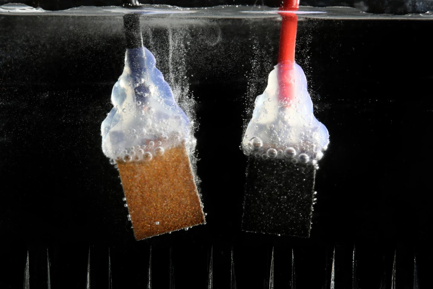 an experiment to separate soil by setting in water Plants are natural water filters when water moves through soil and how fast the water moves through this experiment is a very separate plants and.