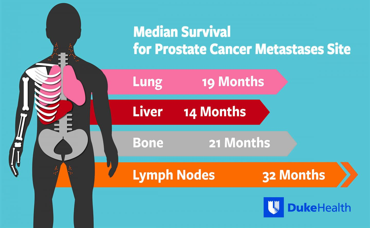 Prostate Cancer Survival Rates