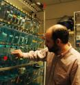 David Tobin, the lead author of a study on genetic susceptibility to tuberculosi stands in a zebrafish aquarium room at the University of Washington. Zebrafish are a model for studying TB.