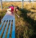 Elizabeth Carlisle reaches into a +Heat plot during plot work in Fall 2010.