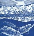 Artistic reconstruction of a pod of <em>Arktocara yakataga</em>, swimming offshore of Alaska during the Oligocene, about 25 million years ago, with early mountains of Southeast Alaska in the background. The authors speculate that <em>Arktocara</em> may have socialized in pods, like today's oceanic dolphins, while possessing a much longer snout, like its closest living relative in the freshwater rivers of South Asia.