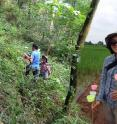 Birds and bees are good indicators of the overall biodiversity of a particular area. Lead author Fangyuan Hua and her collaborators collected bee species and identified them using DNA barcoding. The researchers found bees suffered from reforestation regardless, which was likely caused by the lack of floral resources in replanted forests.